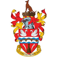 Staines Town 1 - 0 Woking