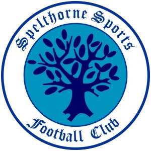 Spelthorne Sports Match Details