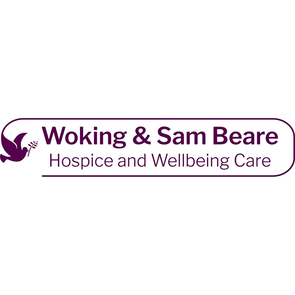 Wing Walking for Woking Hospice